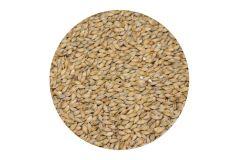 Солод ячменный Pale ale EBC 4-6 (Курский солод) 1 кг